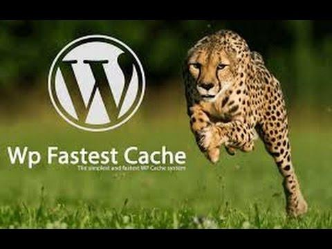 WP Fastest Cacheプラグインとロリポップのコンテンツキャッシュは同時に入れていいのか試してみました