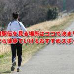箱根駅伝2020を見る場所はココで決まり!駅から徒歩でいけるおすすめスポット