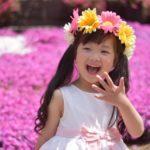 芝桜の名所関西4選見ごろはいつごろ?