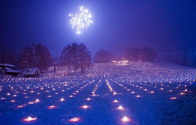 十日町雪まつり 祭り情報バスツアー
