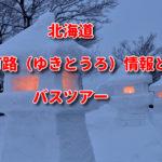 雪灯路(ゆきとうろ)2020情報とバスツアー!定山渓雪灯路|支笏湖氷濤まつり|層雲峡|旭川冬まつり|さっぽろ雪まつり|小樽